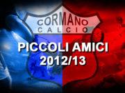 PICCOLI AMICI 2012_13